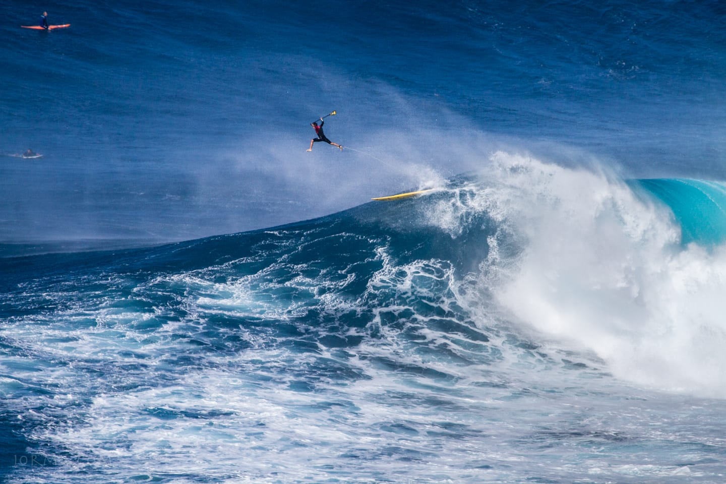 Jaws2015_2016_25