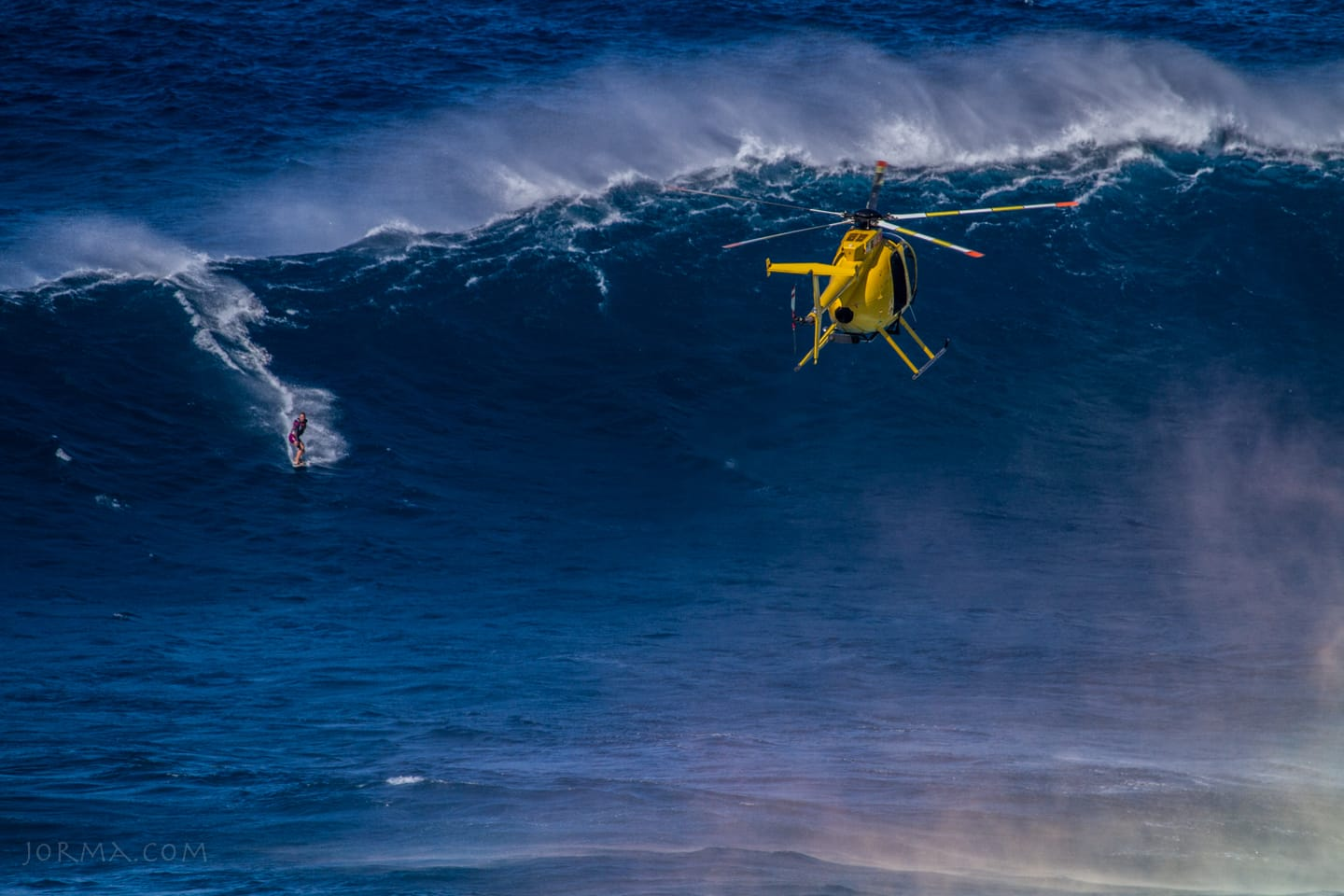 Jaws2015_2016_27