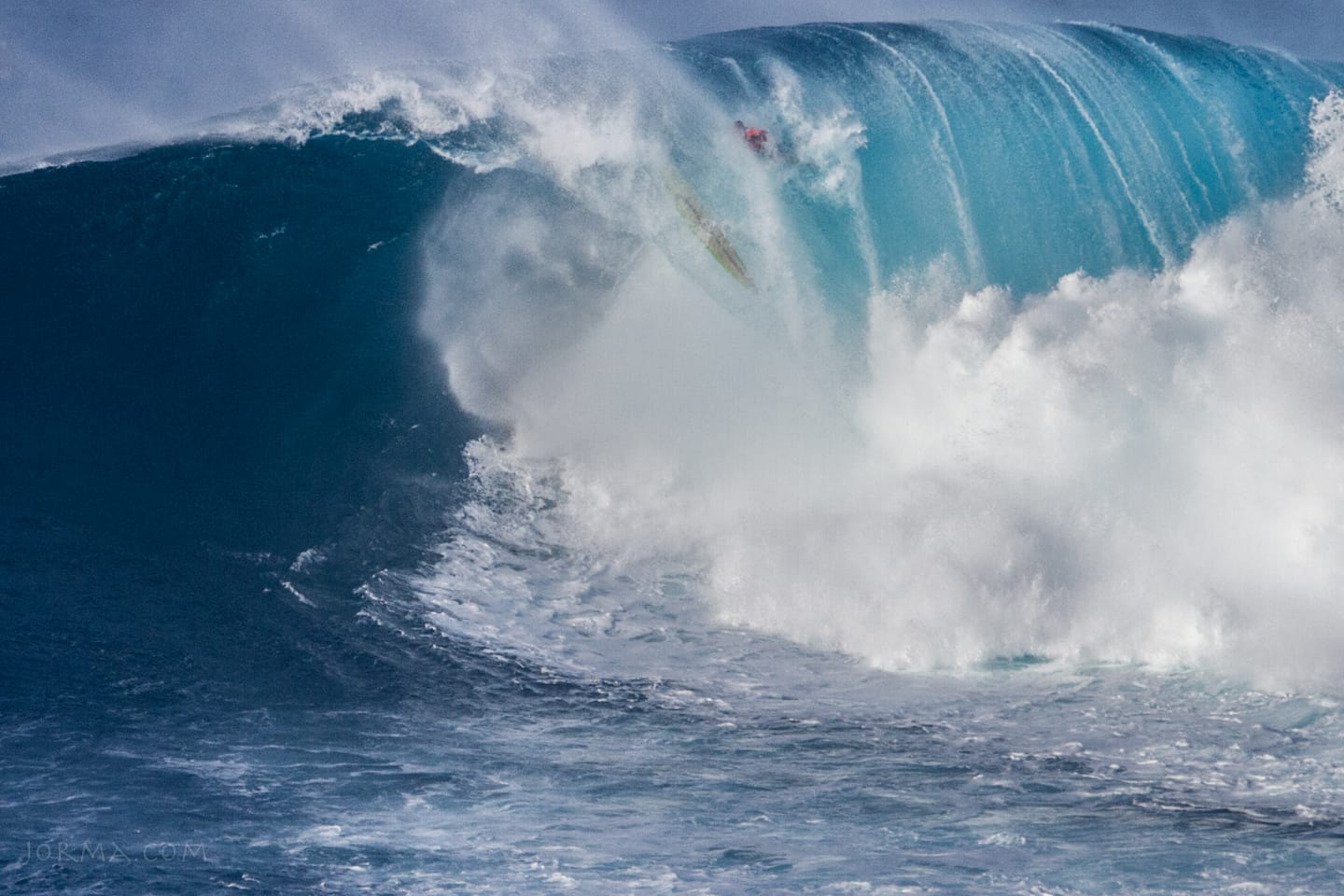 Jaws2015_2016_48