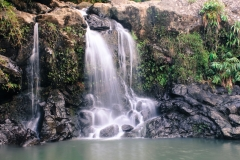bamboo_forest_falls